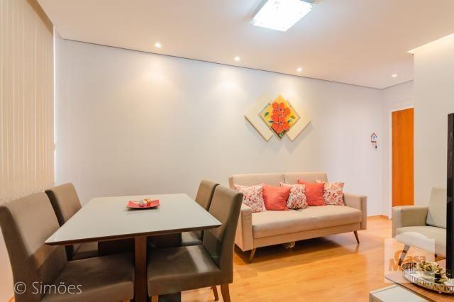 Apartamento à venda com 3 dormitórios em Salgado filho, Belo horizonte cod:273971 - Foto 5