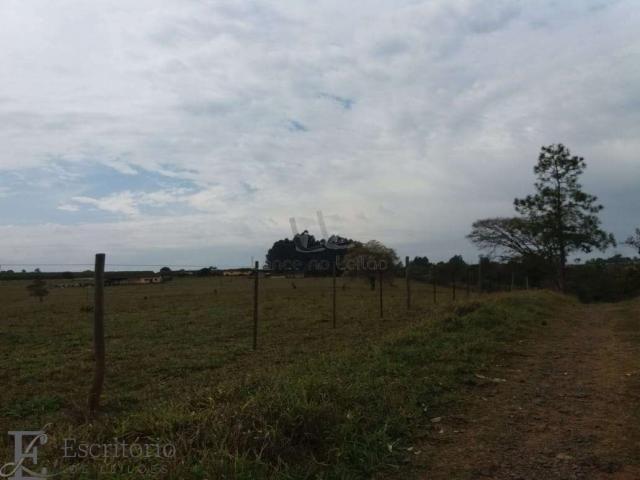 Chácara à venda em Centro, Piraju cod:FA00004 - Foto 2