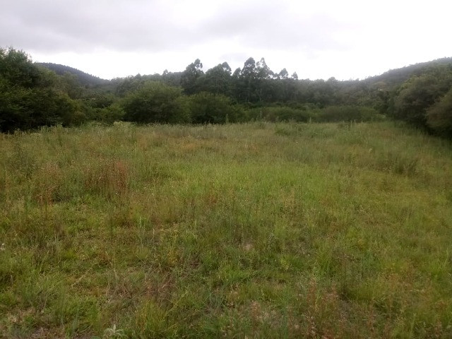 2 hectares! Sonho de Sitio!