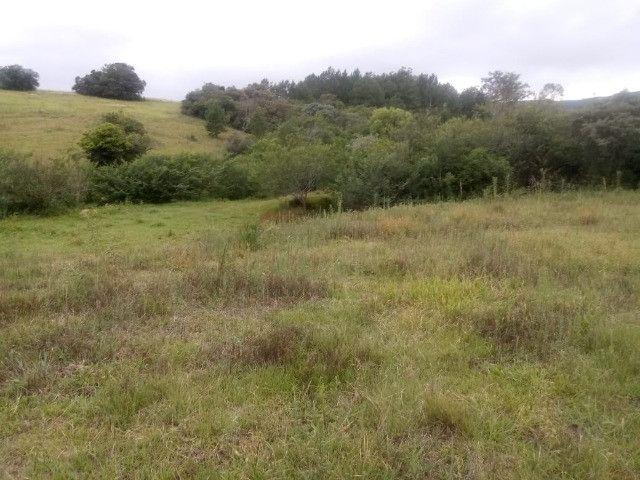 2 hectares! Sonho de Sitio! - Foto 12
