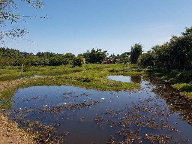 Barbada - Sítio com 4.890 m2 no Condomínio Rancho Alegre e Feliz - Aguas Claras - Viamão - Foto 5