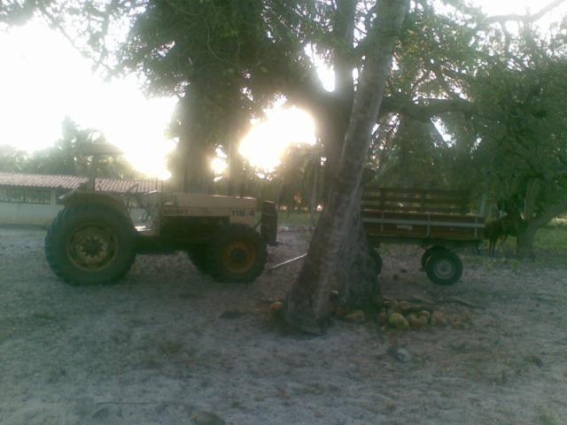 Fazenda 500ha - Foto 12
