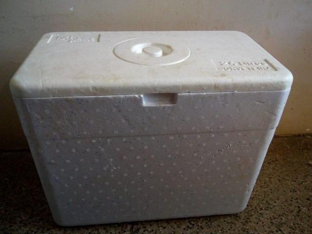 Caixa térmica com capacidade para 24 litros