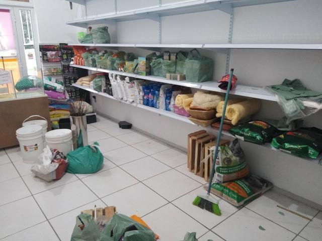 Estoque de agropecuária / pet shop
