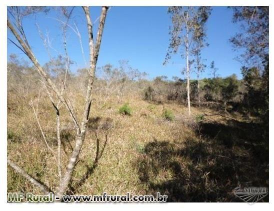 Área de terra com 3 hectares em Fagundes Varela (capela São José) - Foto 5