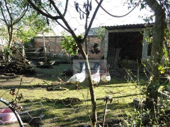 Chácara urbana, 1.590m² à venda, por R$ 400.000 - Jardim Monte Líbano - Piraquara/PR - Foto 16