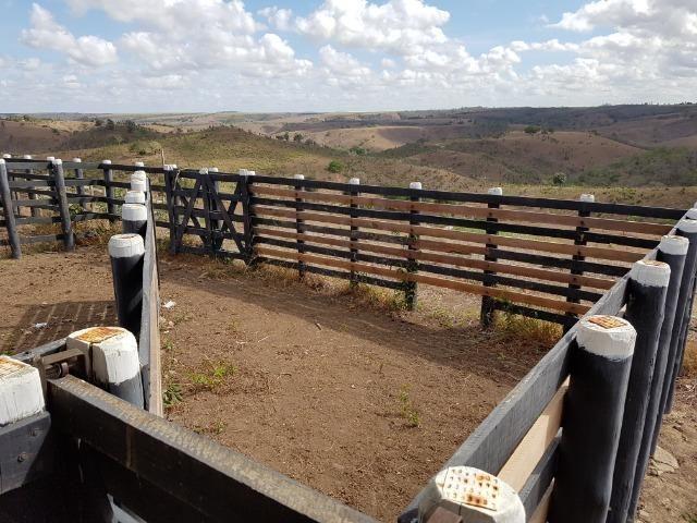 Fazenda ( Vendo ou Troco ) Propriedade Em Teotônio Vilela-AL - Foto 13