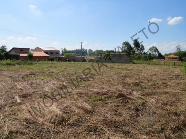 REF 909 Terreno 1000 m², escritura ok, 2 km da cidade e 300 mts do asfalto, Imob Paletó - Foto 3