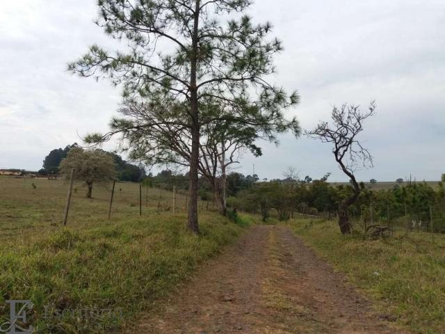 Chácara à venda em Centro, Piraju cod:FA00004 - Foto 3