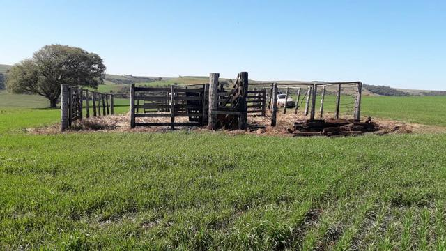 Vende-se ou permuta-se curral ( mangueira) para gado - Foto 2