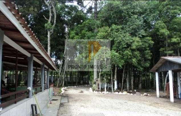Chácara para Venda em São José dos Pinhais, SÃO MARCOS, 3 dormitórios, 1 banheiro - Foto 2
