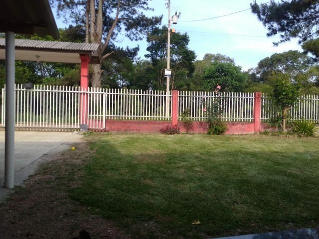Vende-se chácara em Anta Magra - Quitandinha (cód. A354) - Foto 3