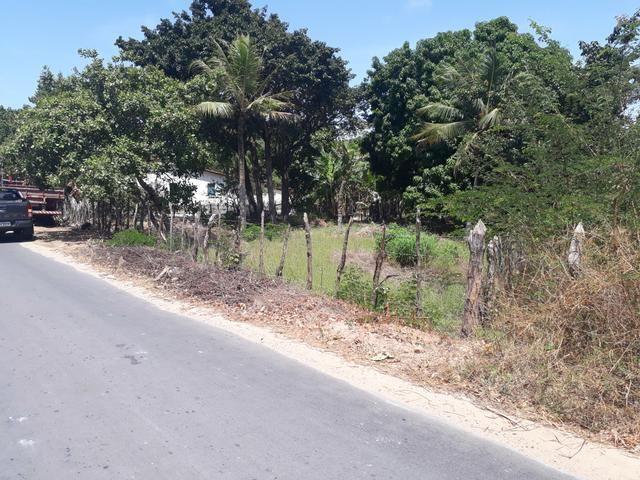 Terreno em barreirinhas - Foto 3