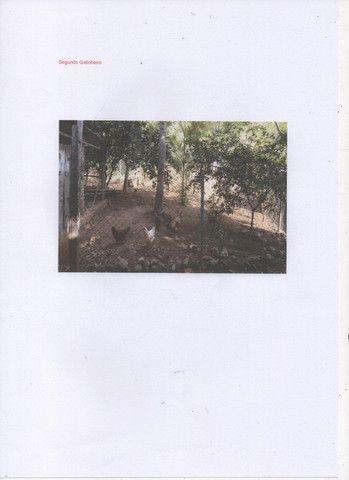 Chácara com 11000 mts 2 - Foto 6