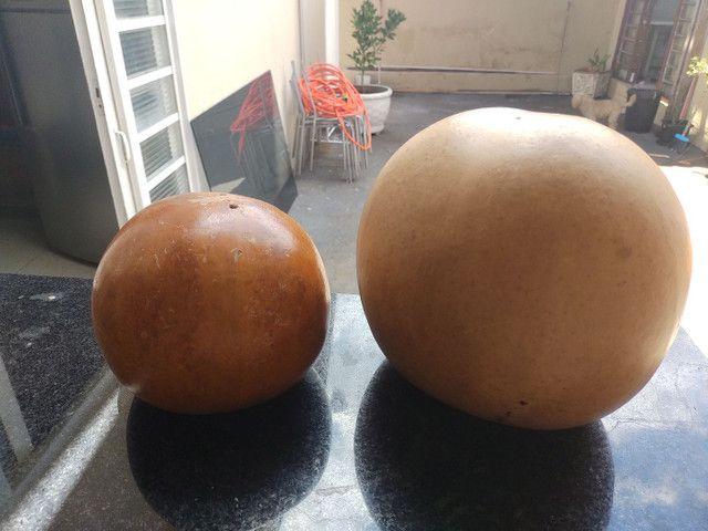 Purunga/cabaça - Foto 2