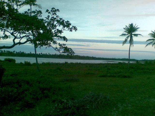 Fazenda 500ha - Foto 18