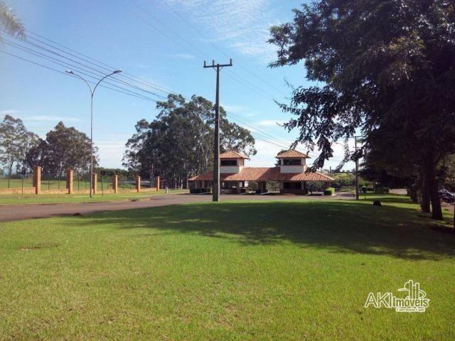 8046   Terreno à venda em Centro, Iguaraçu - Foto 10