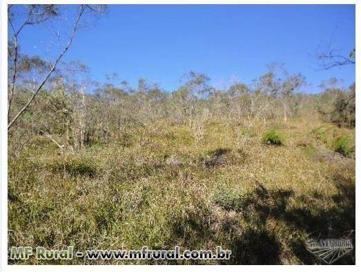 Área de terra com 3 hectares em Fagundes Varela (capela São José) - Foto 6