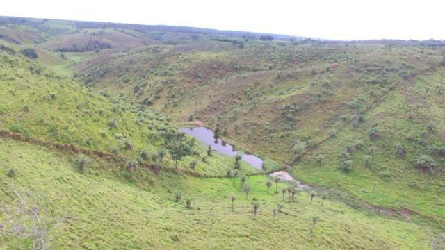 Fazenda ( Vendo ou Troco ) Propriedade Em Teotônio Vilela-AL - Foto 4