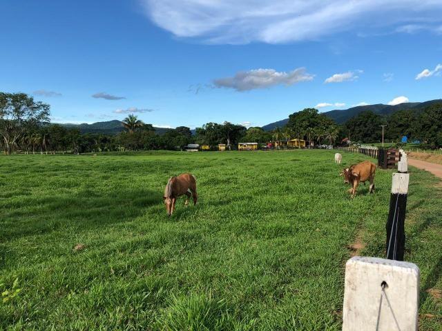 Chácara à venda em Palmeiras, Santo antônio do leverger cod:CH00004 - Foto 15