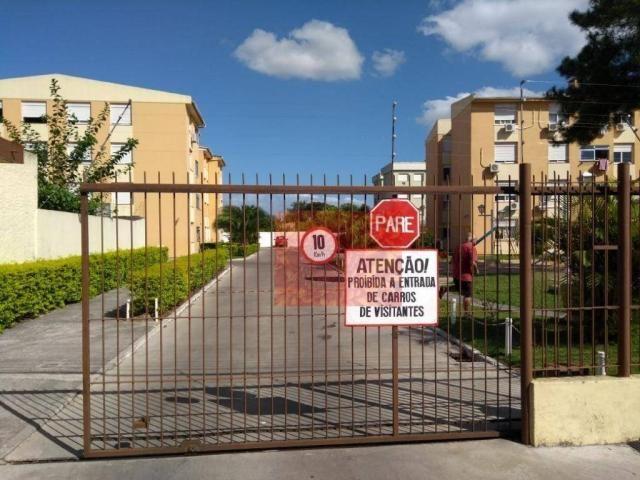 Apartamento com 3 dormitórios à venda, 67 m² por R$ 276.000,00 - Três Vendas - Pelotas/RS - Foto 18