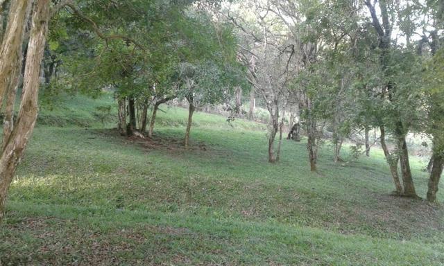 Vende-se chácara em Anta Magra - Quitandinha (cód. A354) - Foto 16