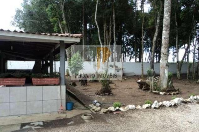 Chácara para Venda em São José dos Pinhais, SÃO MARCOS, 3 dormitórios, 1 banheiro - Foto 3