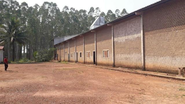 Vendo Linda Fazenda de frente a estrada - a 30 km de porto velho/Ro - Foto 15