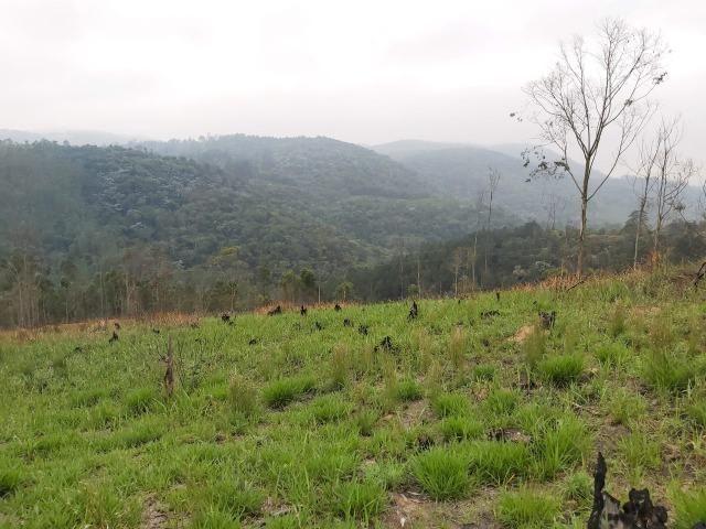 Terreno próximo de Araçariguama - Foto 5