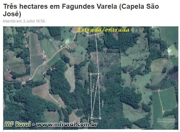 Área de terra com 3 hectares em Fagundes Varela (capela São José)