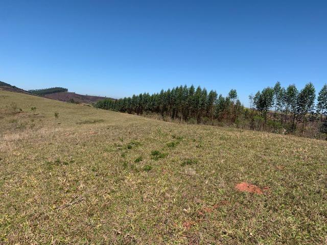 Conquiste o sonho de comprar um terreno e ter a sua casa própria - Foto 5