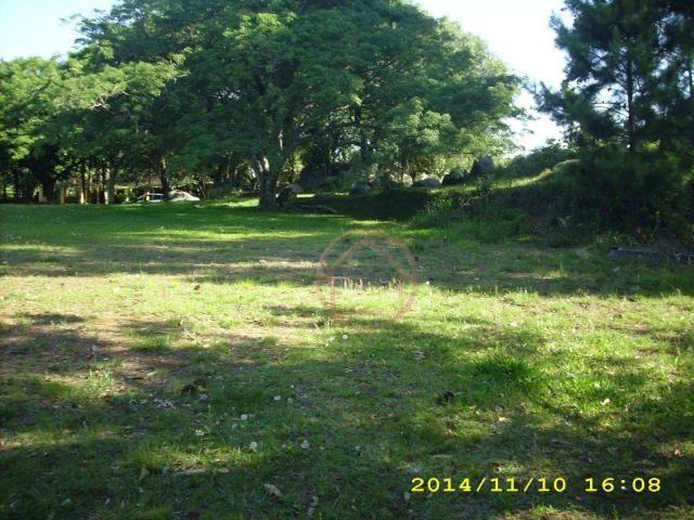 Rancho com 1 dormitório à venda por R$ 4.399.000,00 - Lomba do Pinheiro - Porto Alegre/RS - Foto 8