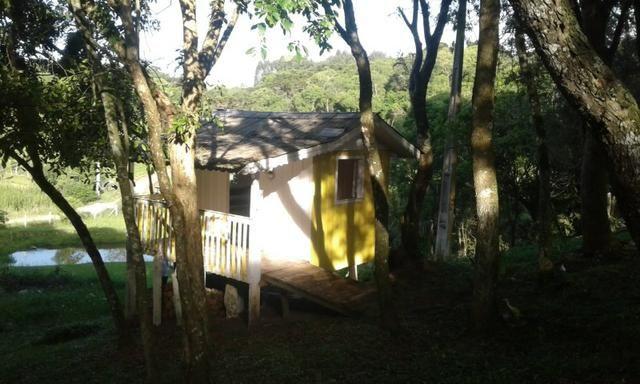 Vende-se chácara em Anta Magra - Quitandinha (cód. A354) - Foto 4