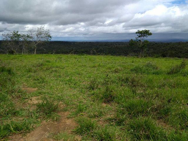 FAZENDA  em tapiramuta  - Foto 6