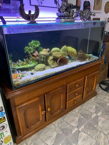 Aquario completo + móvel