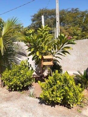 Aluguel de Rancho Salto botelho/ Lucélia - Foto 2