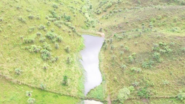 Fazenda ( Vendo ou Troco ) Propriedade Em Teotônio Vilela-AL - Foto 2