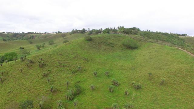 Fazenda ( Vendo ou Troco ) Propriedade Em Teotônio Vilela-AL - Foto 6