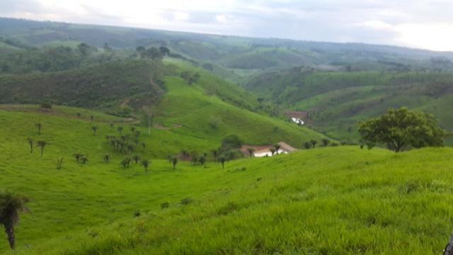 Fazenda ( Vendo ou Troco ) Propriedade Em Teotônio Vilela-AL
