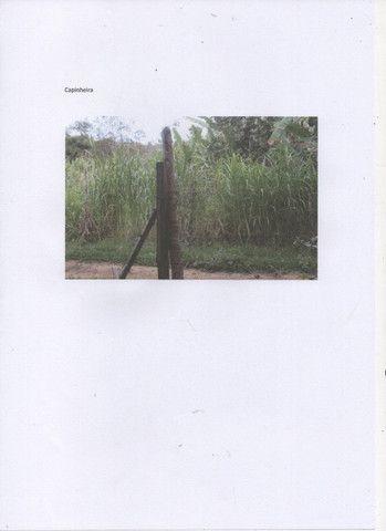 Chácara com 11000 mts 2 - Foto 9