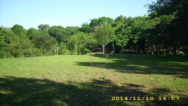 Rancho com 1 dormitório à venda por R$ 4.399.000,00 - Lomba do Pinheiro - Porto Alegre/RS - Foto 7