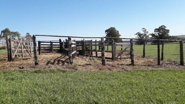 Vende-se ou permuta-se curral ( mangueira) para gado - Foto 5