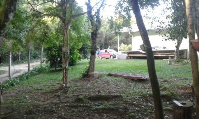 Vende-se chácara em Anta Magra - Quitandinha (cód. A354) - Foto 14