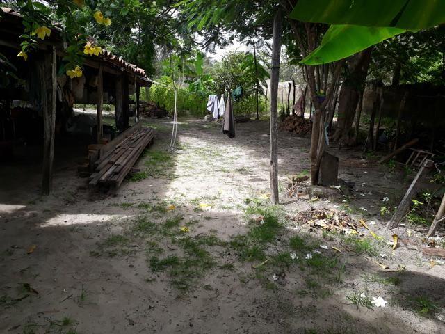 Terreno em barreirinhas - Foto 2
