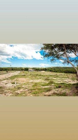 396 M² LOTEAMENTO MIRANTE DO IGUAPE ( AQUIRAZ )  - Foto 6