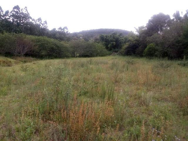 2 hectares! Sonho de Sitio! - Foto 13
