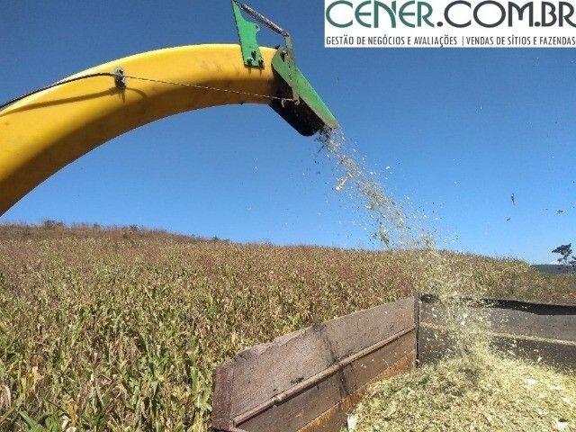 2098/Sítio com 25ha - Excelente para plantio e criação de gado em Cruzília-MG - Foto 10