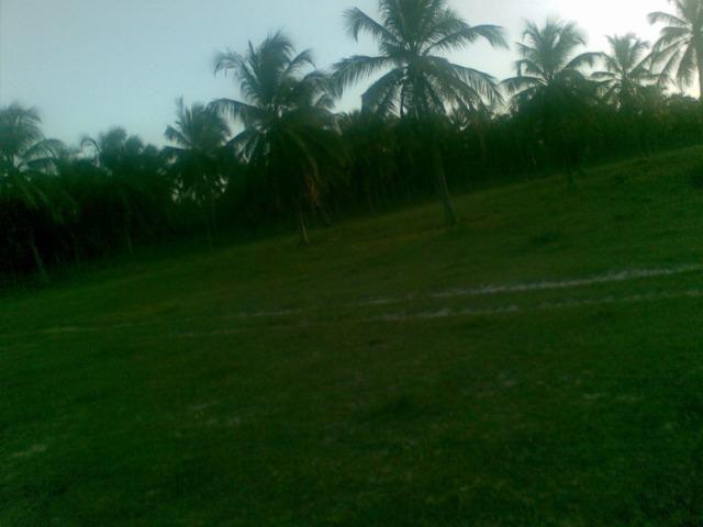 Fazenda 500ha - Foto 5
