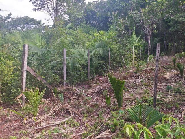 Terreno na Comunidade do Caranazal