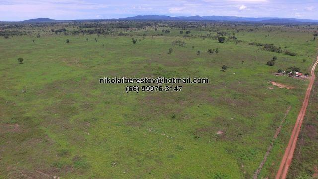 Arrenda 1.000 hectares pra lavoura nordeste mt